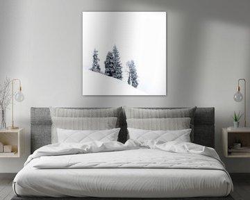Sneeuwwit landschap in Zwitserland van Martijn van der Nat