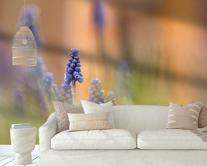 Sfeerimpressie behang: blauwe druifjes van Ria Bloemendaal