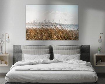 Rotterdamse Haven achter de Duinen van Marcel Kool