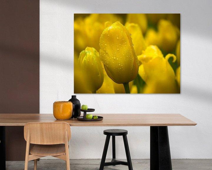 Beispiel: Gelbe Tulpe von Martijn Tilroe
