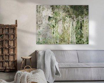 schimmel op de muur van Martijn Tilroe