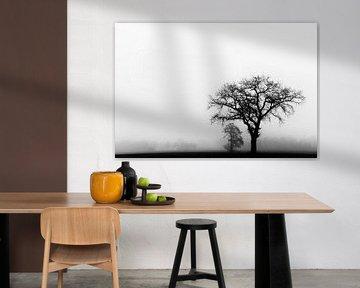Einsamer Baum im Nebel von Francis Dost