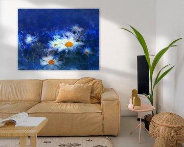 Margeriten mit blauem Hintergrund von Claudia Gründler