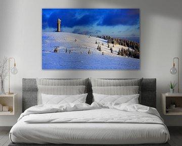 Schwarzwald im Winter von Patrick Lohmüller
