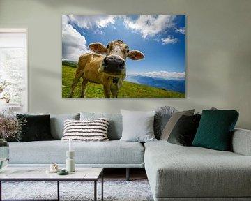 Glückliche Kuh von Denis Feiner