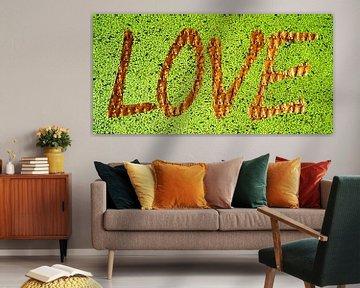 LOVE von Stefan Havadi-Nagy