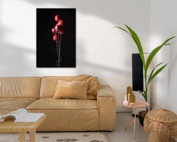 Äpfel oder Luftballons? von Laura Loeve