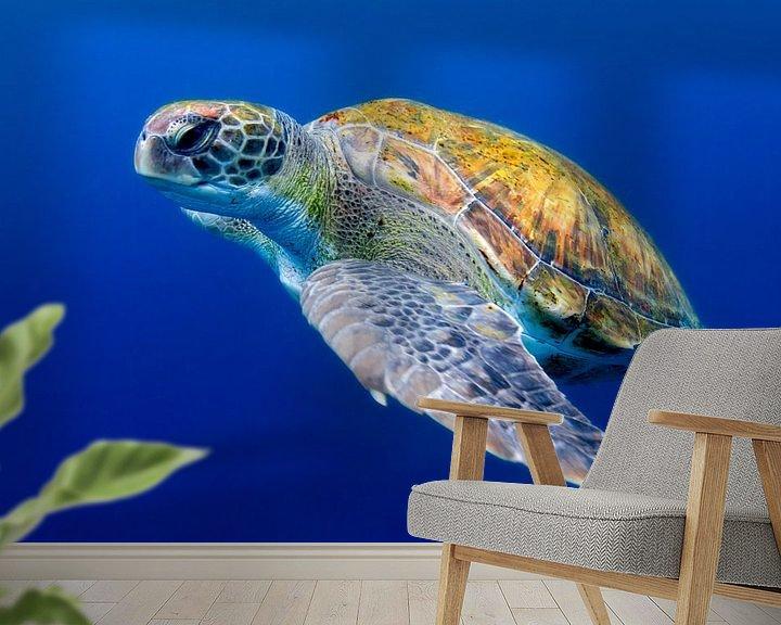 Sfeerimpressie behang: Groene zeeschildpad bij Tenerife van Filip Staes