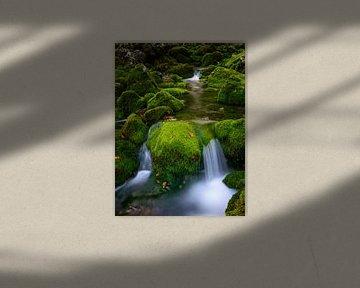 Groene beekbedding van Denis Feiner