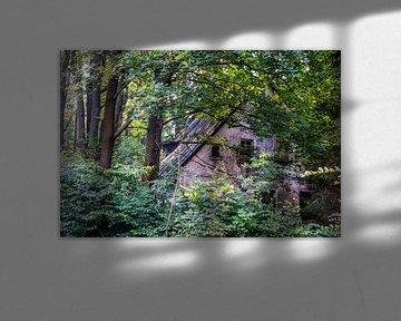 oude verlaten boederij in Sokołowsko van Eric van Nieuwland