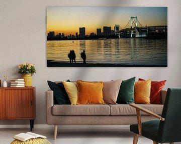 tokyo zonsondergang van Stefan Havadi-Nagy