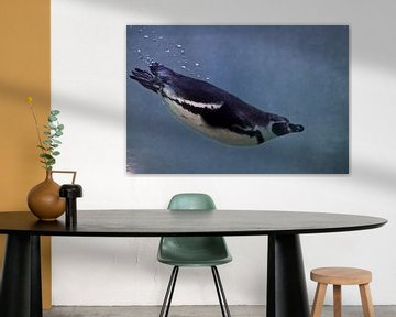 Pinguin schwimmt im blauen Wasser vom Betrachter weg, ein Blick von hinten von Michael Semenov