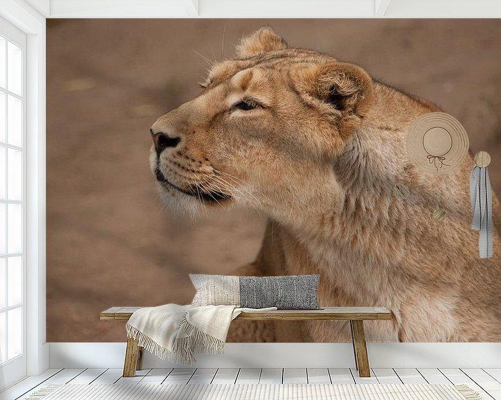 Sfeerimpressie behang: half-profiel portret, twijfelachtig gevaarlijk. Leeuwin vrouwtje is een grote roofzuchtige sterke en van Michael Semenov