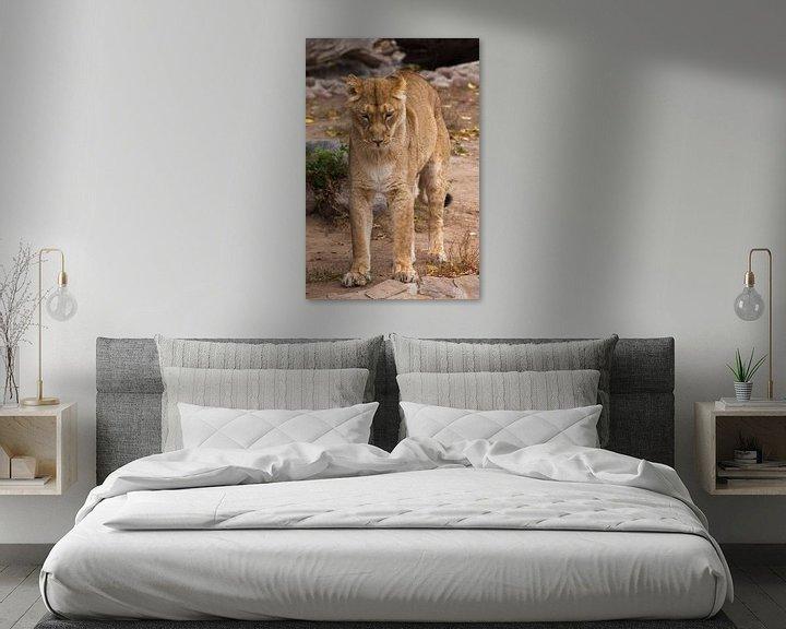 Sfeerimpressie: Strekt, staat op zijn achterpoten als een kat zijn rug opheft Leeuwinnetje is een grote roofzuchtige van Michael Semenov