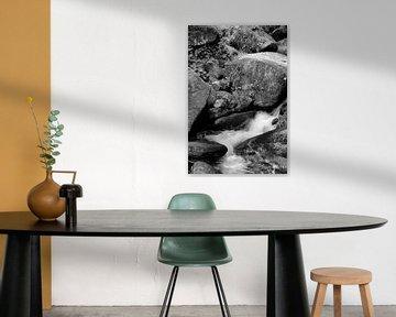 Ein kleiner Teil des Triberger Wasserfalls in Deutschland von Fred en Roos van Maurik