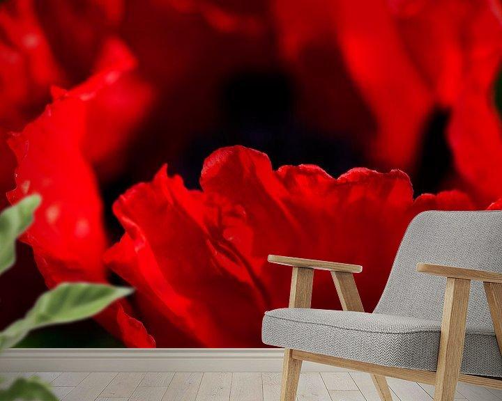 Sfeerimpressie behang: Rode papavers in eigen tuin van Margo Schoote