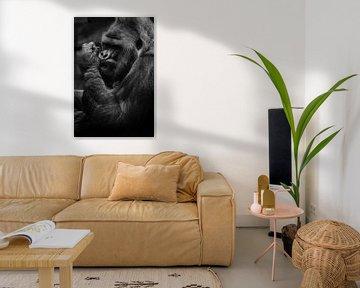 starke Hand. Die brutale Schnauze eines mächtigen und starken männlichen Gorillas ist ein Symbol für von Michael Semenov