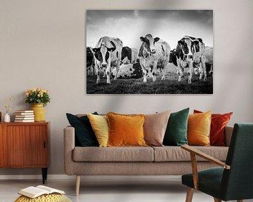 Kühe auf der Wiese von Peter Nederlof