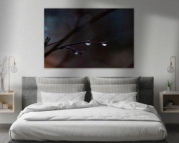 dunkler Regen von Tania Perneel