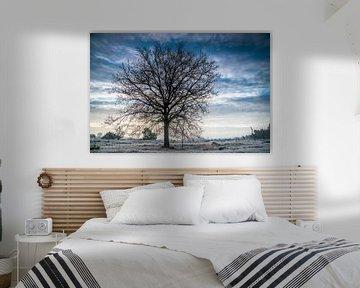 Eenzame boom van Edwin Werkhoven