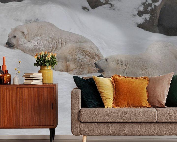 Beispiel fototapete: Zwei Eisbären - ein Männchen und ein Weibchen, die imposant auf dem Schnee liegen. von Michael Semenov