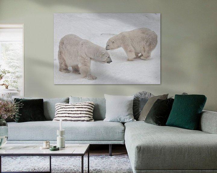 Beispiel: Zwei Eisbären - ein Männchen und ein Weibchen, die imposant auf dem Schnee liegen. von Michael Semenov