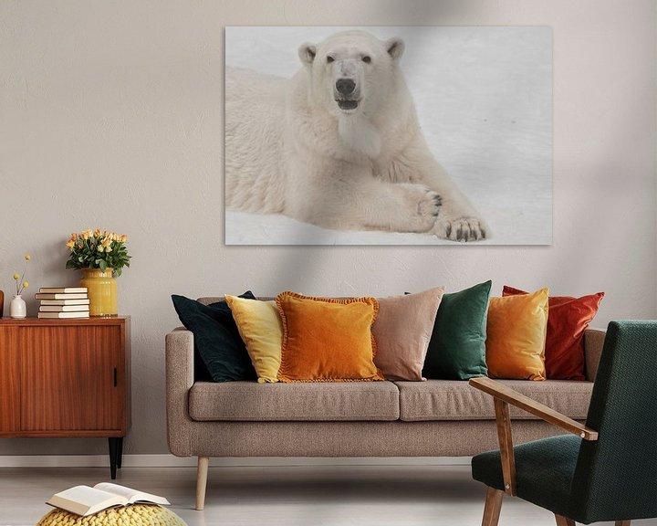 Beispiel: Die Schnauze eines weißen Eisbären aus nächster Nähe. Ein Eisbär auf Schnee ist ein mächtiges nordis von Michael Semenov