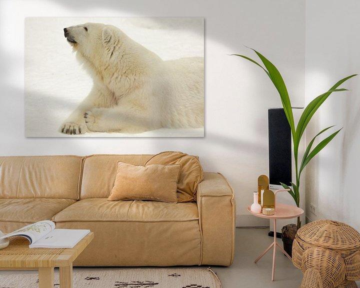 Beispiel: Porträt einer Polarbestie. Nahaufnahme. Schöner und zufriedener arktischer Eisbär im Winter gegen de von Michael Semenov
