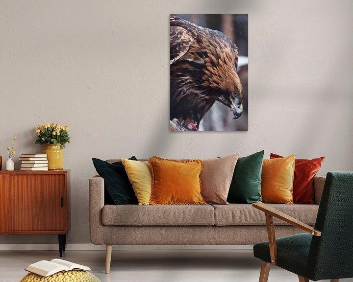 Beispiel: Schrecklicher Adler mit großem Schnabel in Nahaufnahme. Großer zorniger Vogel. von Michael Semenov
