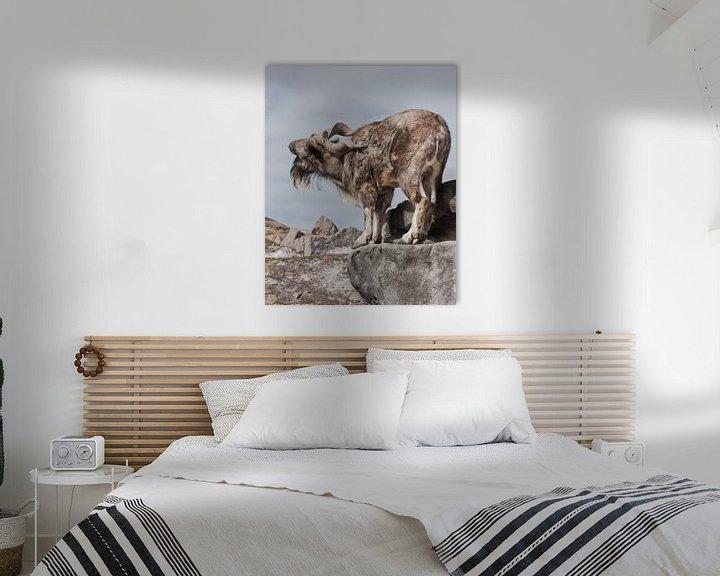 Beispiel: Eine Ziege mit großen Hörnern steht allein auf einem Felsen, einer Berglandschaft und dem Himmel. Al von Michael Semenov