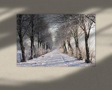 Winter-Wunderland von Henk de Boer