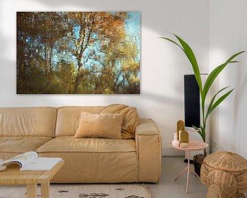 Forêt d'automne sur Diana Mets