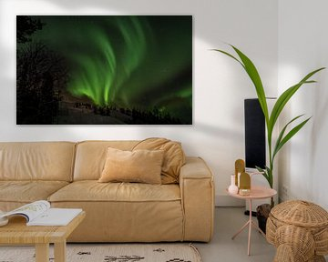 Nordlicht Lappland von Suzanne De Boer
