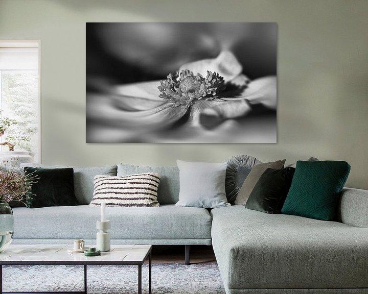 Beispiel: Anemone in Schwarz-Weiß von Leo Langen
