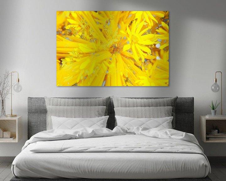 Beispiel: Sonnenhut (Rudbeckia fulgida), abstrakt, Blüte, Blume, Blumen von Torsten Krüger