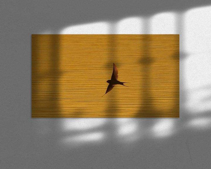 Sfeerimpressie: zwaluw van Anne Koop