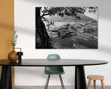 Schwarz-Weiß-Landschaft im Regen von Fred Lenting