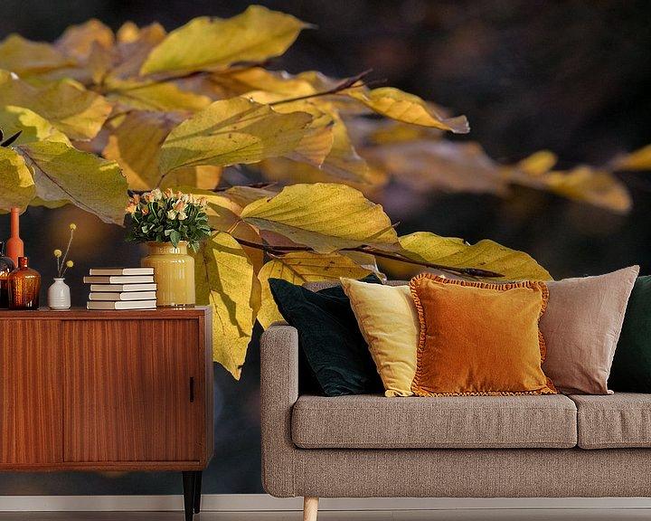 Sfeerimpressie behang: Herfst kleur van Marcel Pietersen