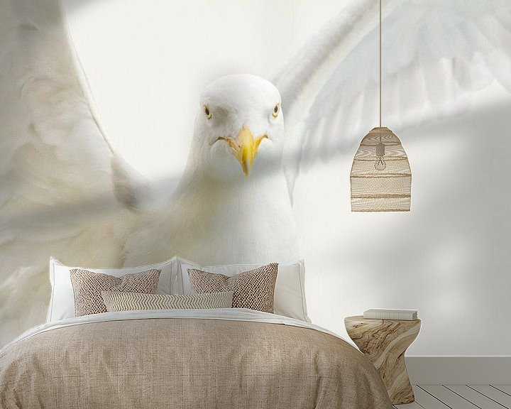 Sfeerimpressie behang: Meeuw van Anne Koop