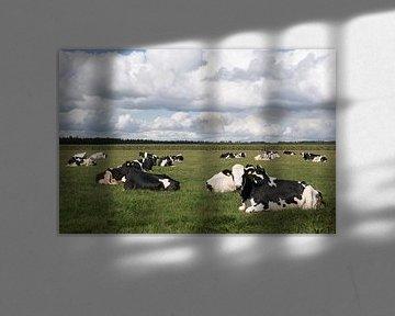 Zwart-witte koeien en hollandse lucht van Carola van Rooy