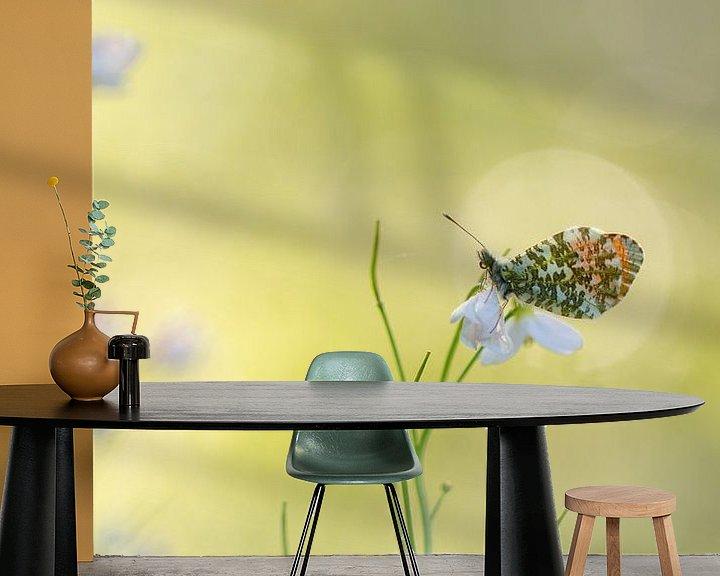 Sfeerimpressie behang: oranjetipje van Ria Bloemendaal