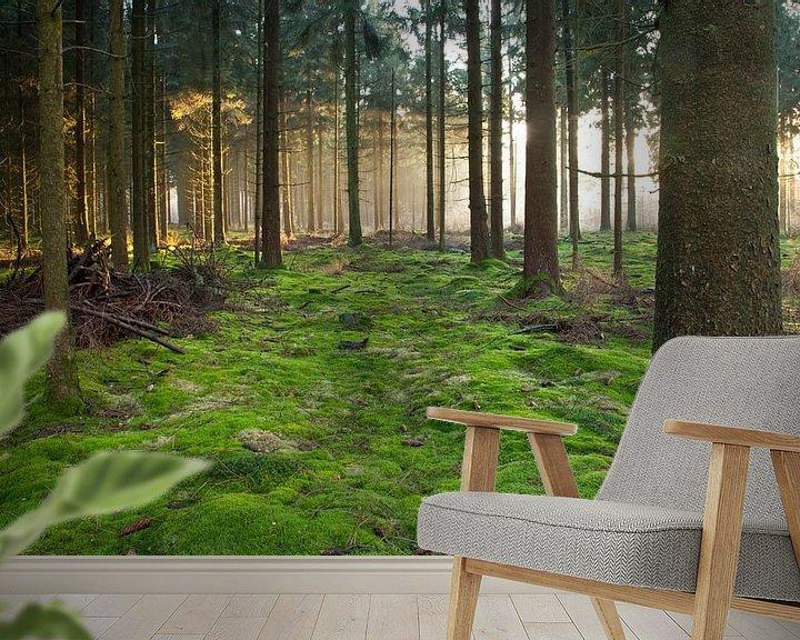 Beispiel fototapete: bos von Anne Koop