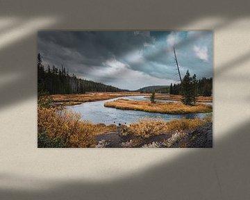 De prachtige natuur van Yellowstone met uitkijk op de Snake River