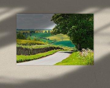 Hügel in den Cotswolds England von Anouschka Hendriks