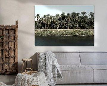 River Nile Egypt van Liesbeth Govers voor omdewest.com