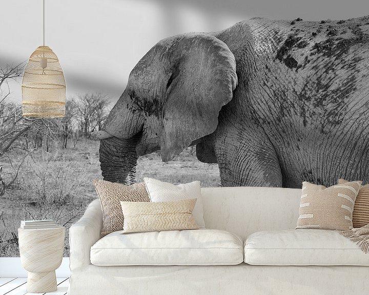 Impression: Vieil éléphant sur Inge Hogenbijl