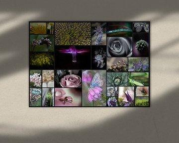 Collage von Blumen von Helga van de Kar