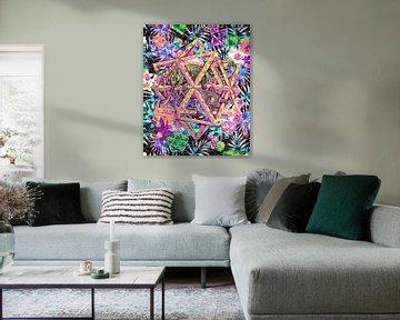 Étoiles et caméléons d'Escher sur Giovani Zanolino