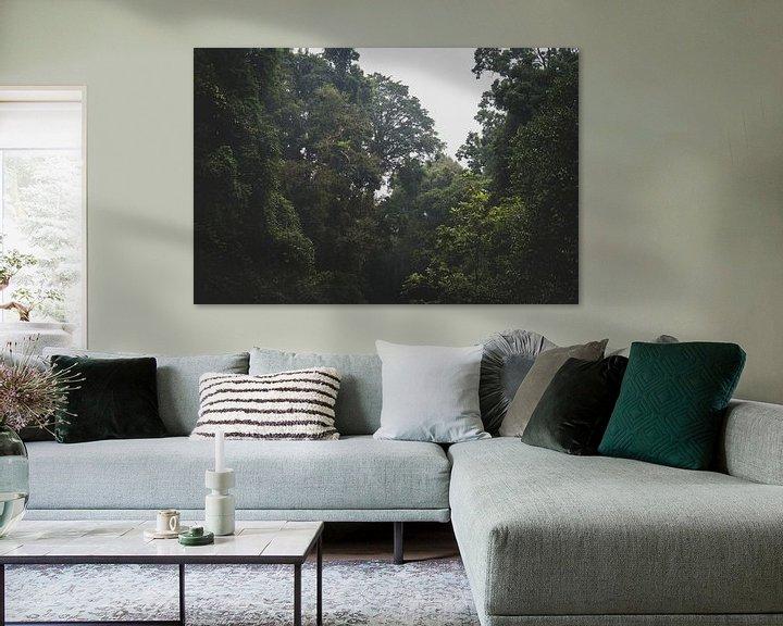 Beispiel: Regenwald von Ennio Brehm