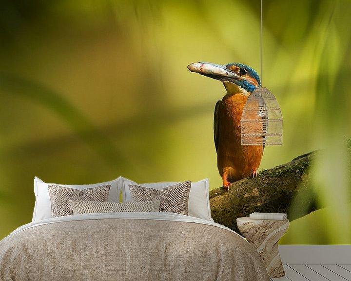Sfeerimpressie behang: Ijsvogel van HJ de Ruijter